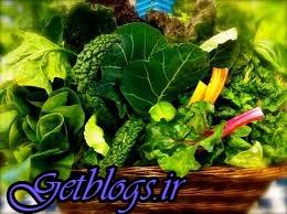 گیاهخوران زمین را نجات میدهند؟