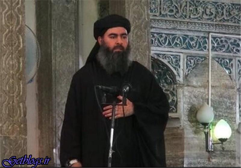 ابوبکر البغدادی زنده و فعال است / روزنامه آمریکایی