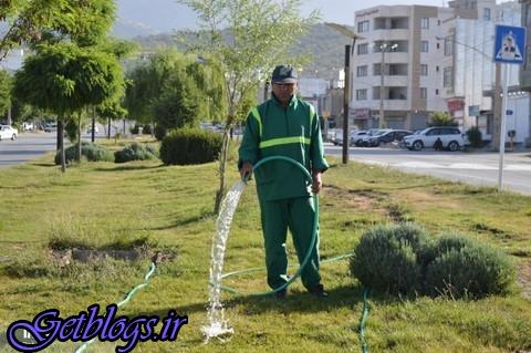 اصفهان آب ندارد، فضای سبز یزد با آب شرب آبیاری می شود!